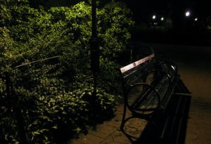 rsz_central_park_by_night_1